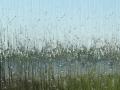 Pattern-Glass-Rain-1