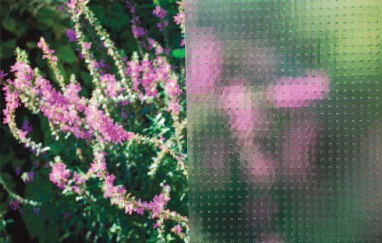 cny-MasterCarre 4/6