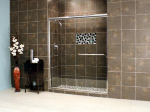 Shower Enclosures - Euro Series - TESE Chrome Clear 05